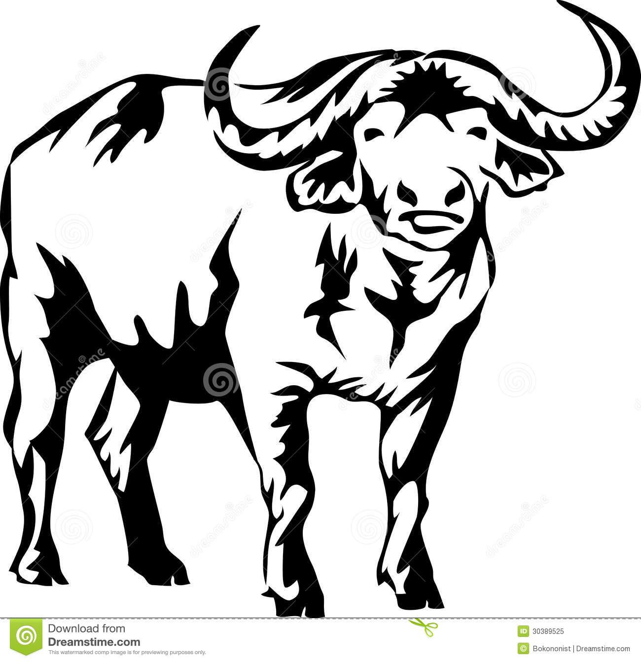 buffalo clipart african