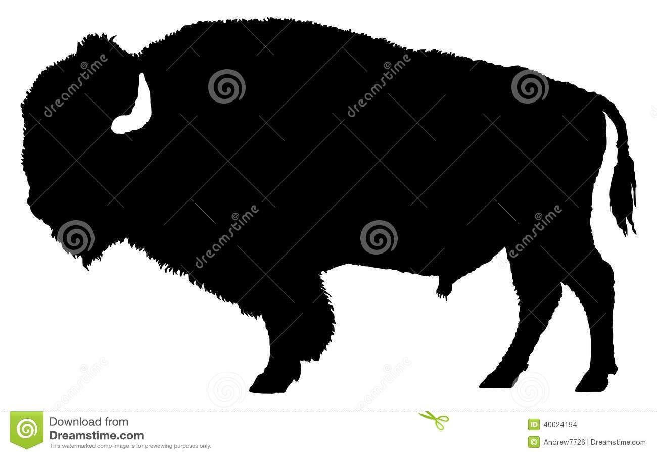 buffalo clipart bison