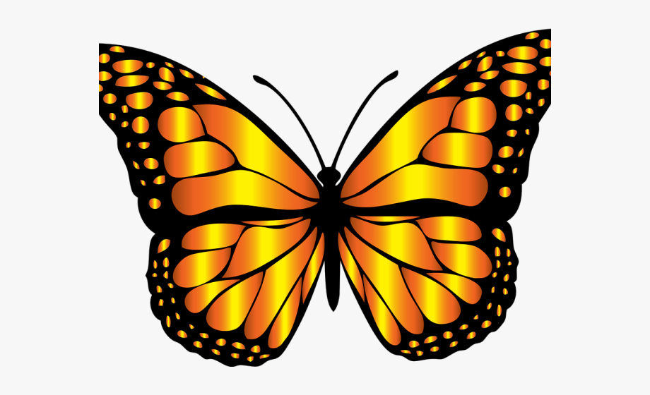 Monarch butterfly clipart.