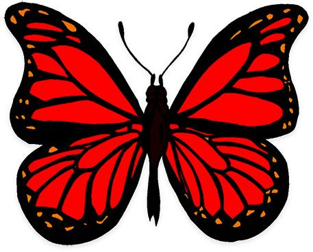 Animated Butterfly Clipart