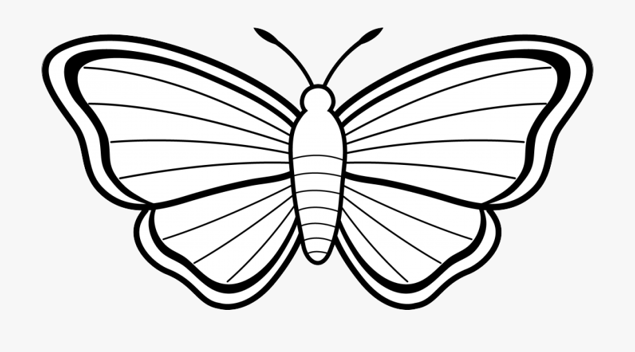 Butterfly clipart black.