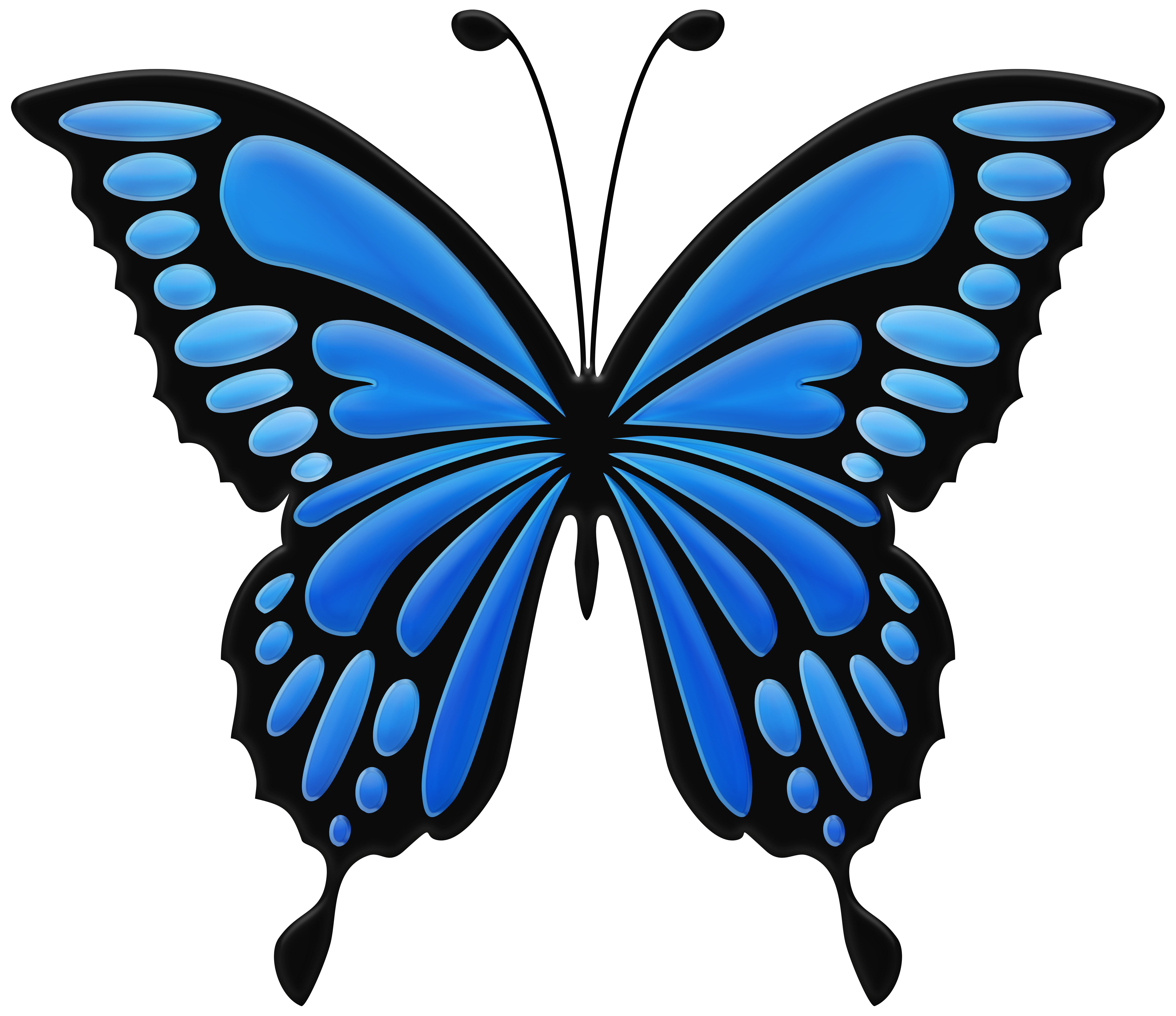 Blue butterfly png.