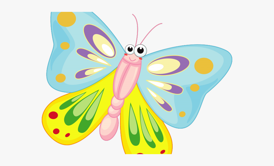 Cartoon butterfly pictures.