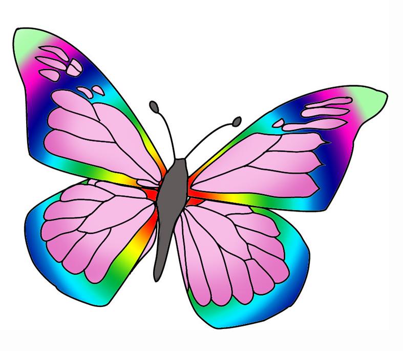 Colorful butterflies clipart.