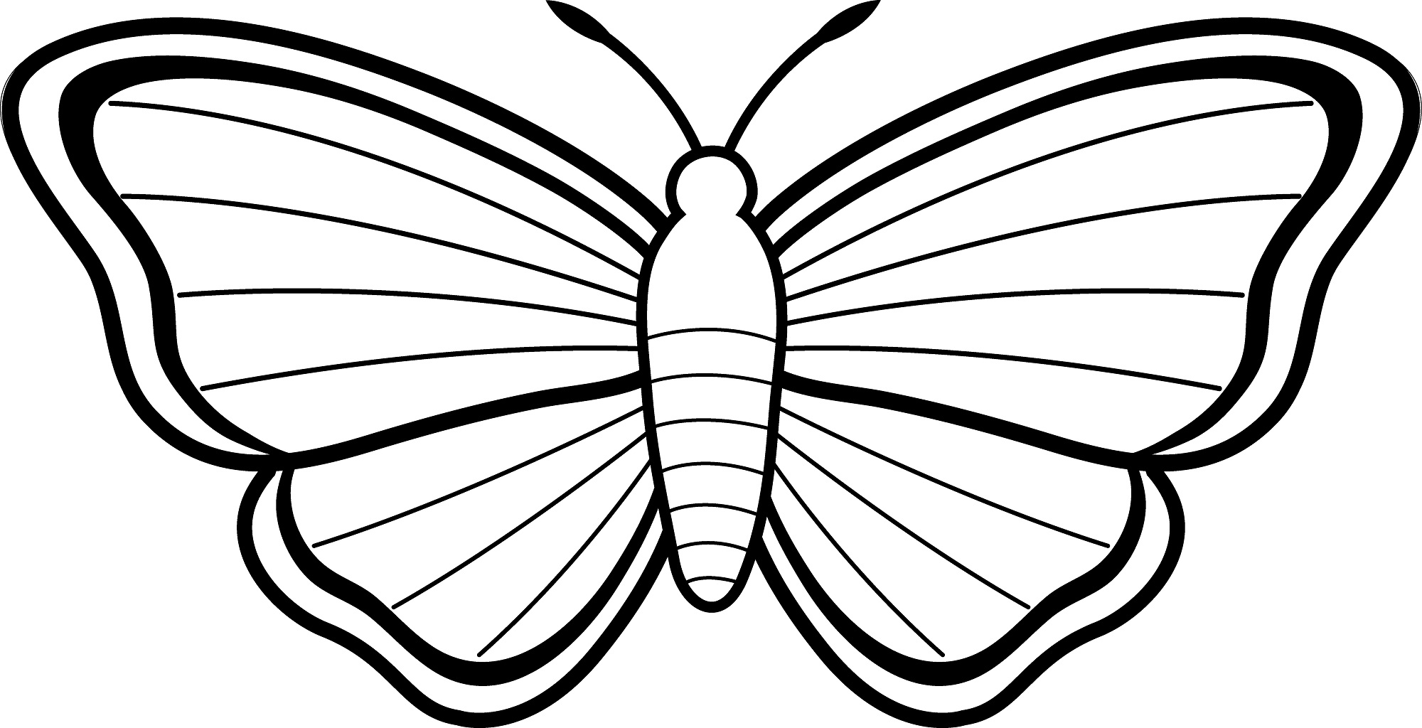 Free Butterfly Drawings, Download Free Clip Art, Free Clip