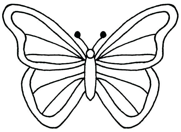 Butterfly clip art line drawing