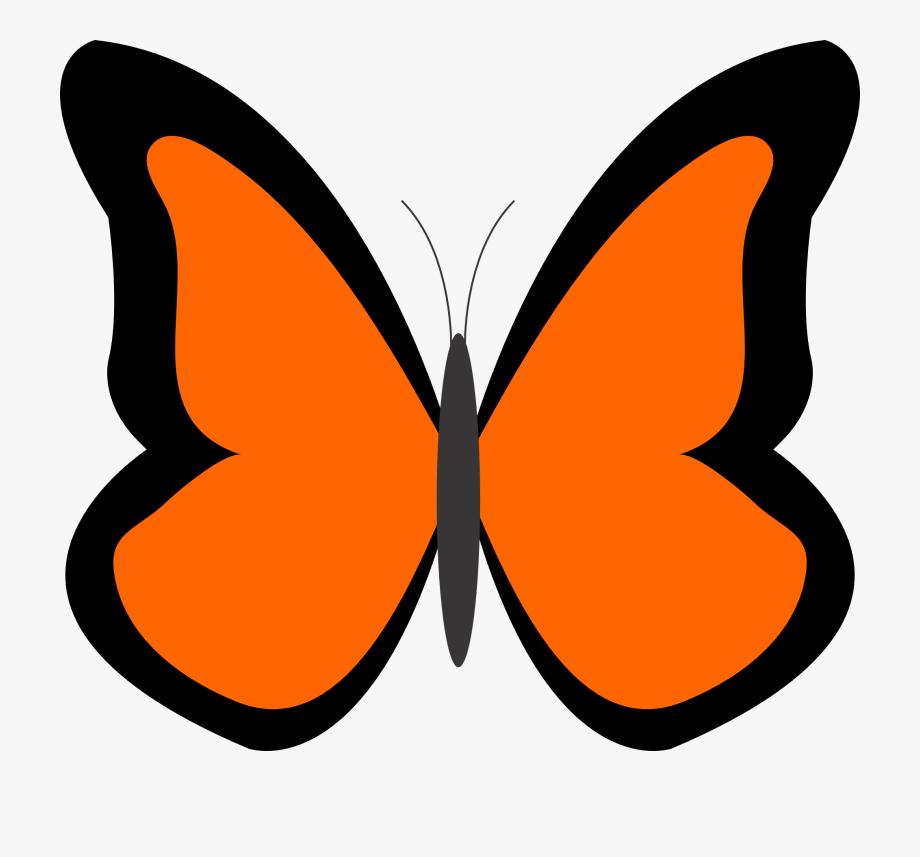 Orange clipart simple.
