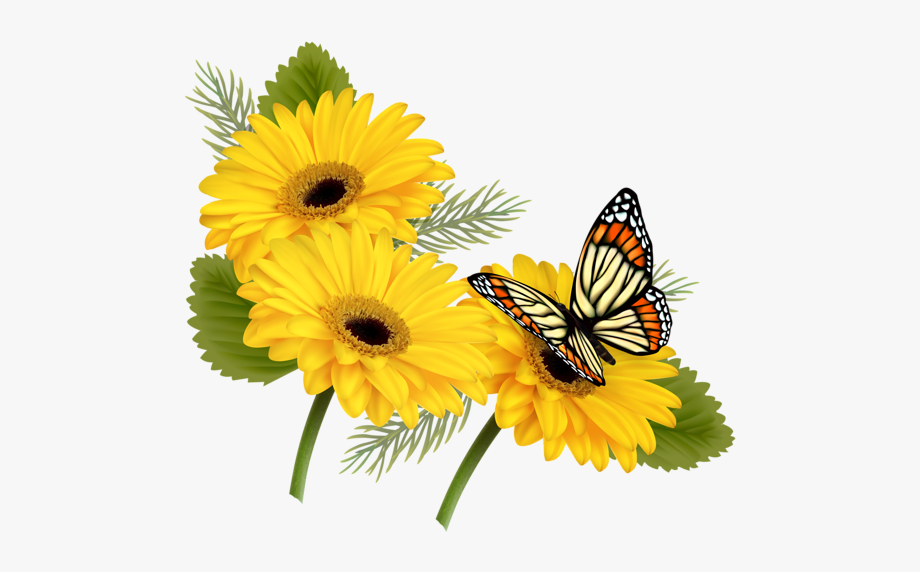 Butterfly With Flowers Png
