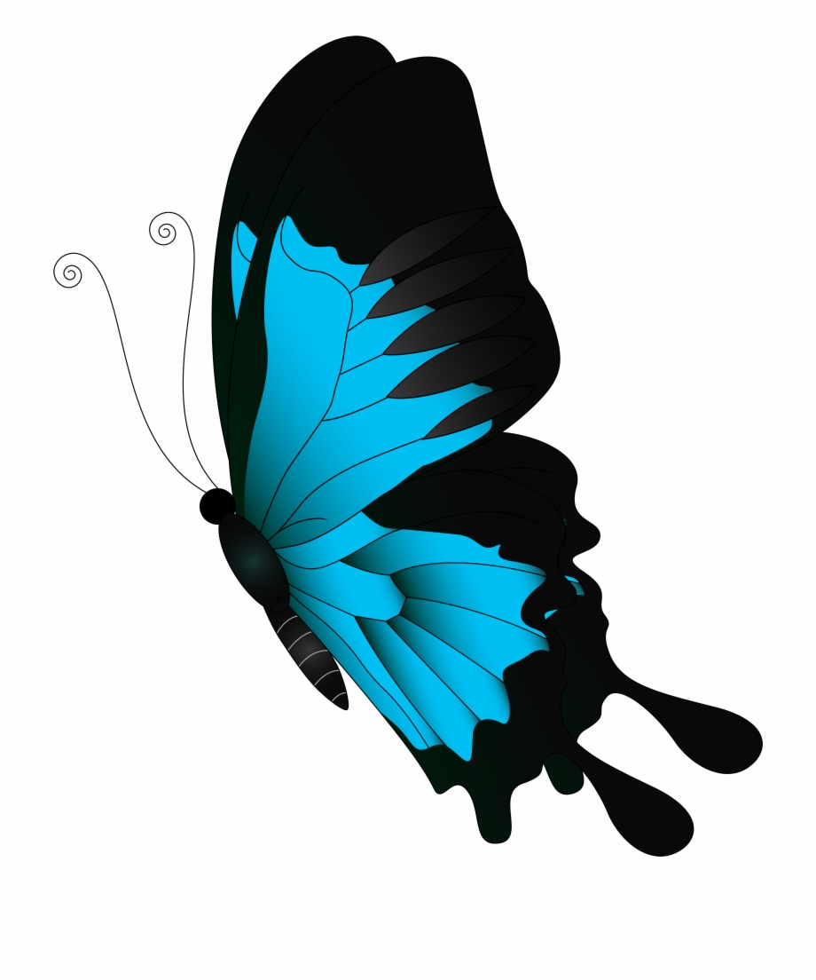 Butterfly Clipart Feather