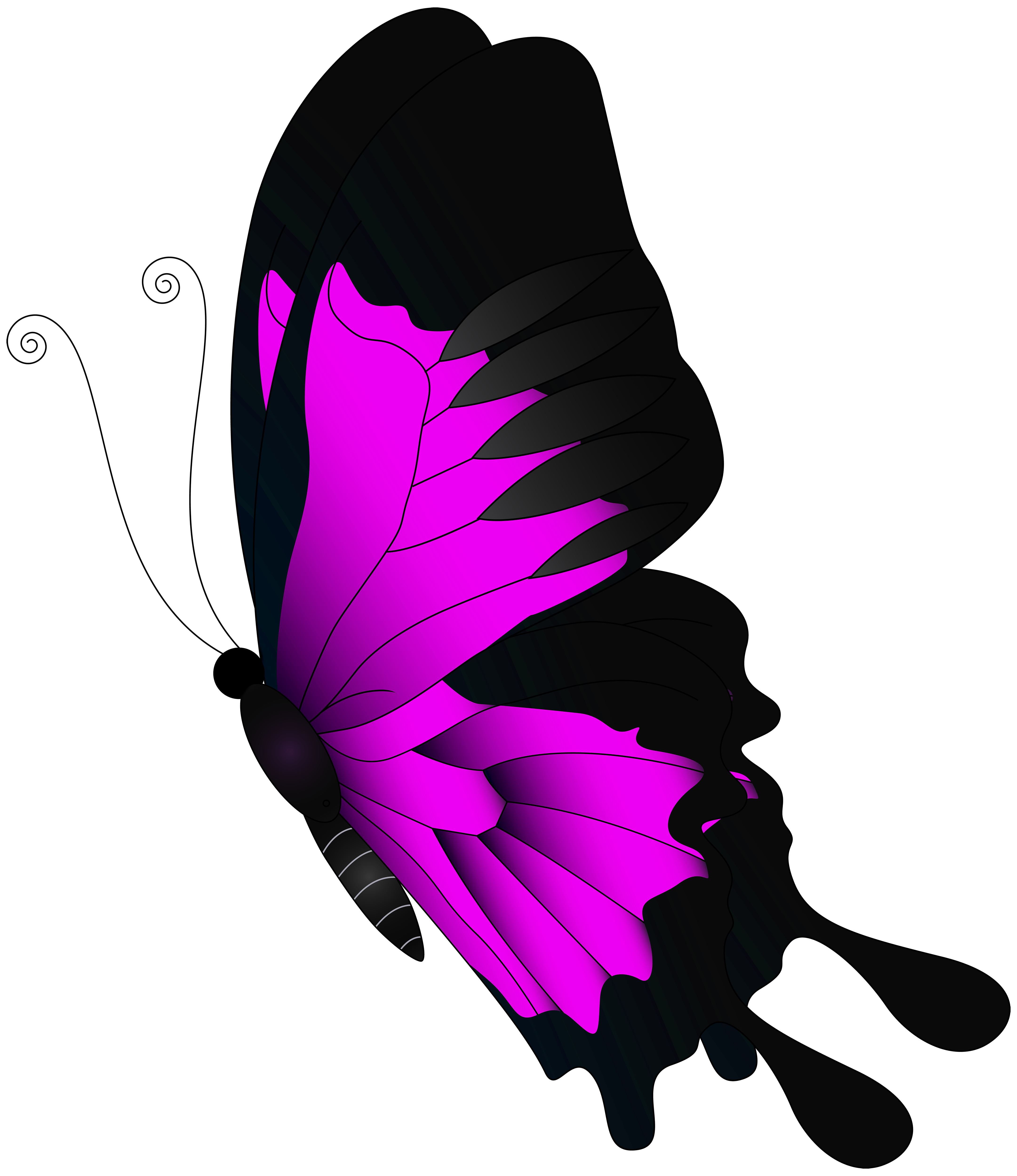 Pink flying butterfly.