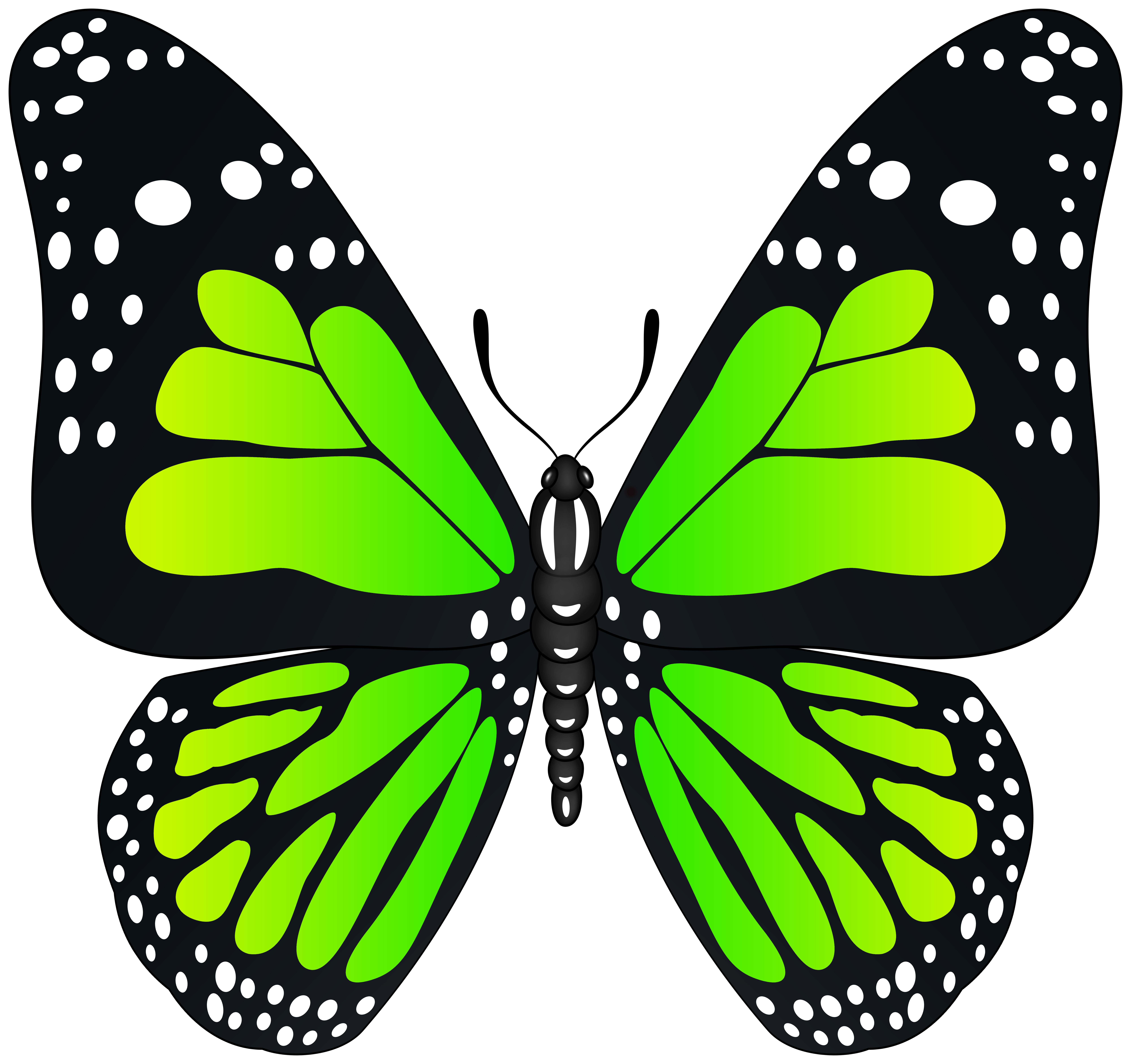Green Butterfly Transparent PNG Image