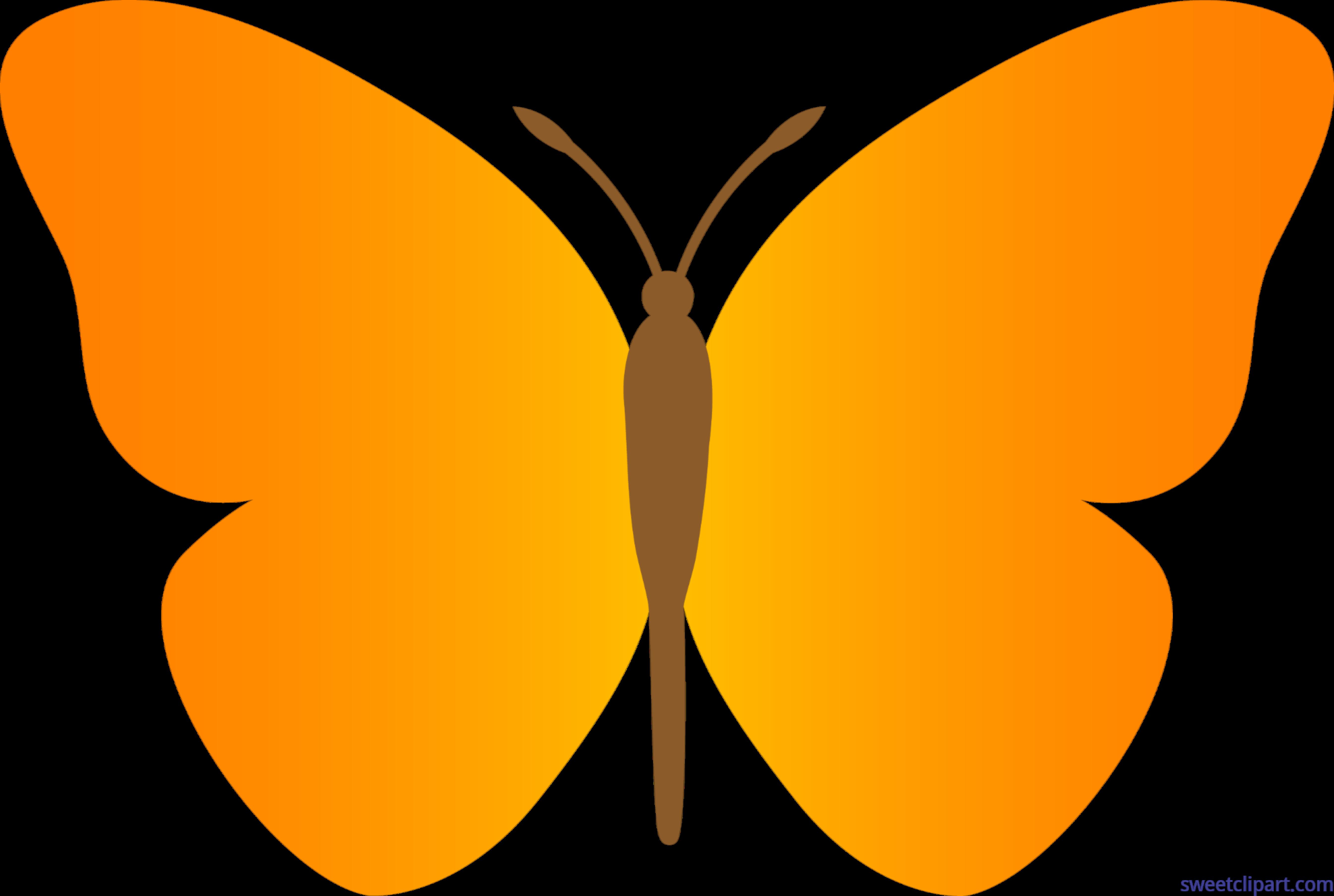 Butterfly orange clip.