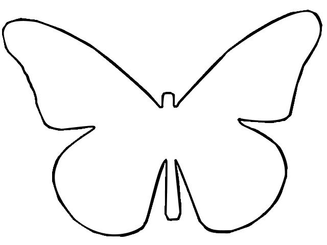 Drawn butterfly outline.