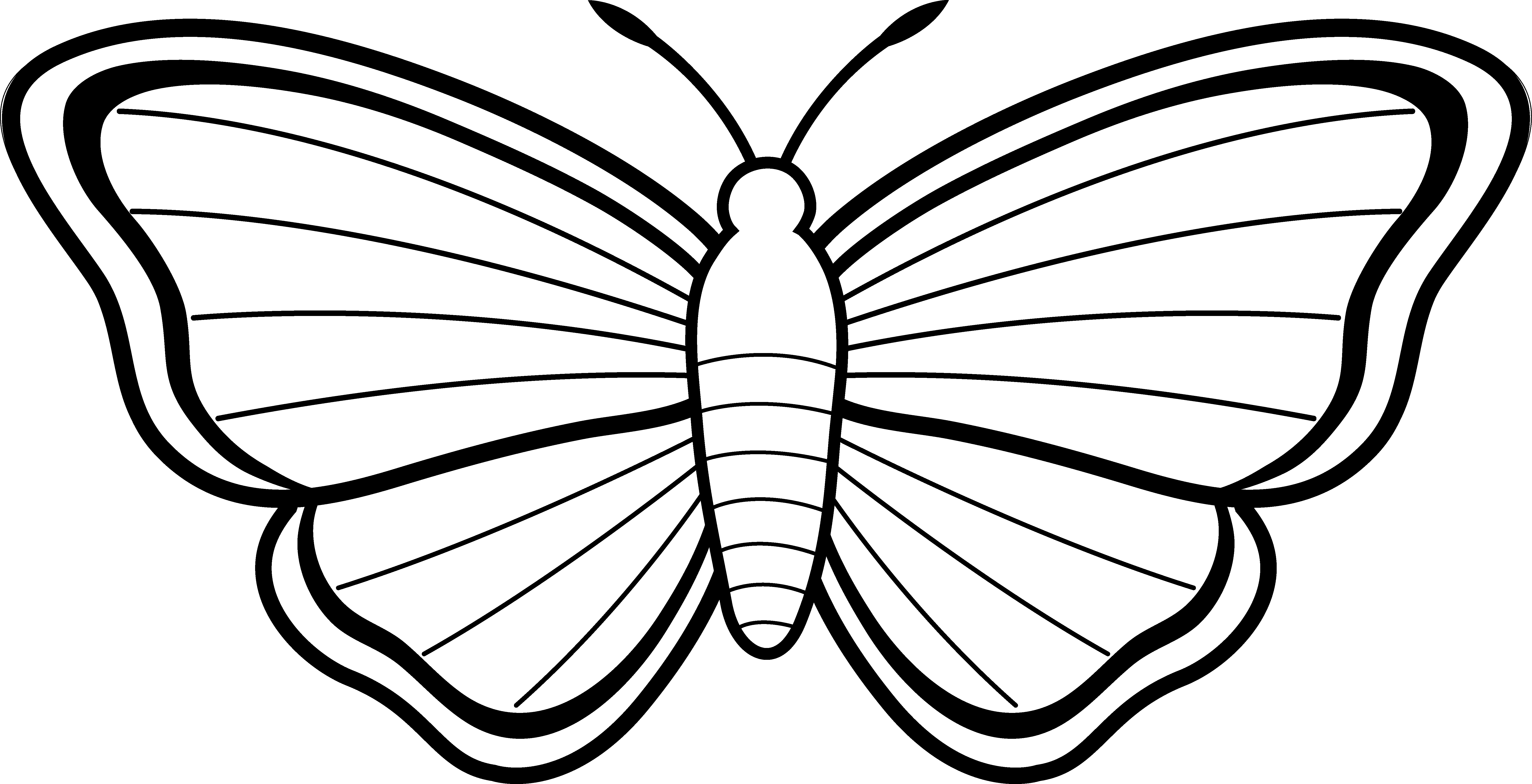 Clipart Butterfly Outline