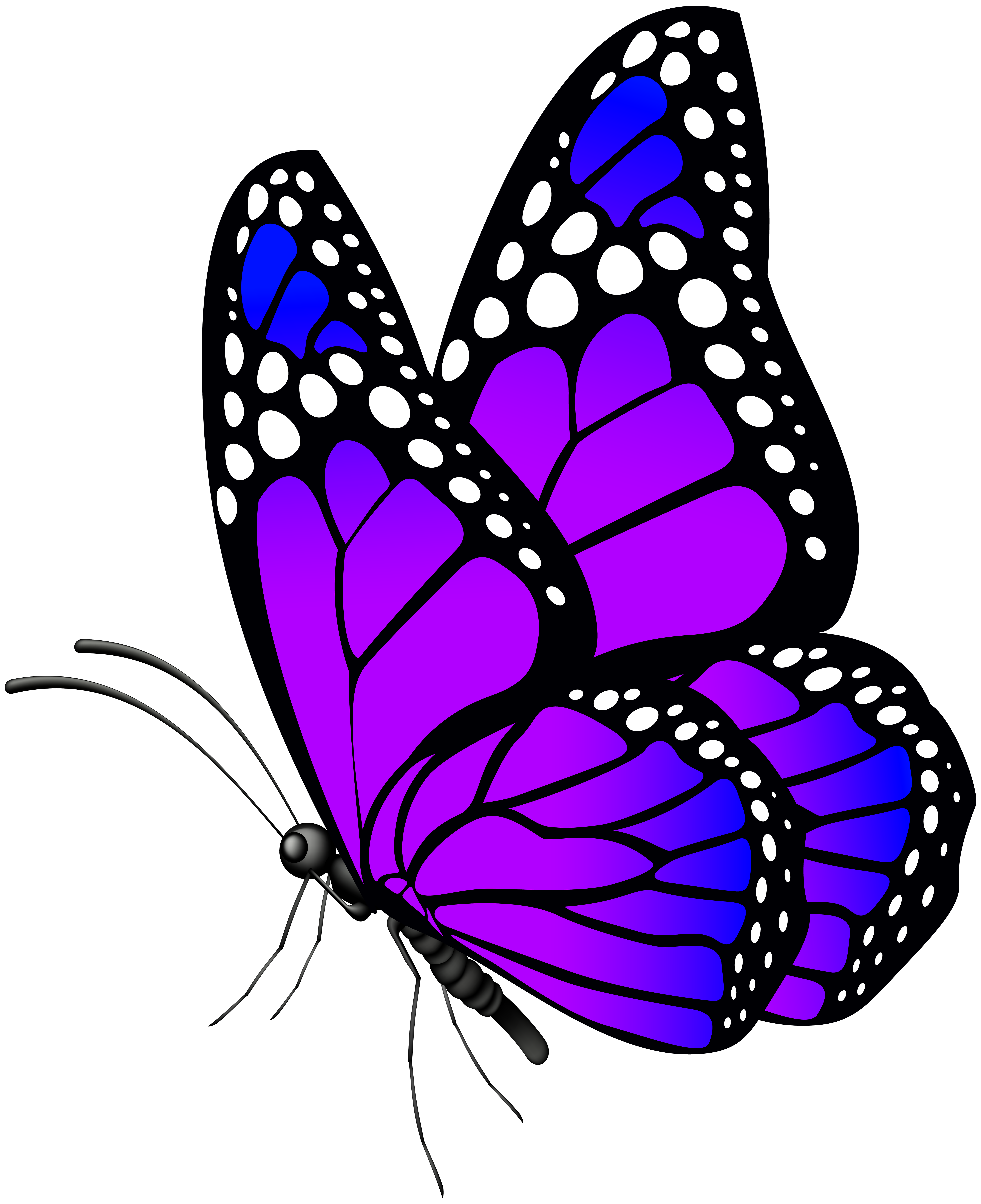 Butterfly Purple PNG Clip Art Image