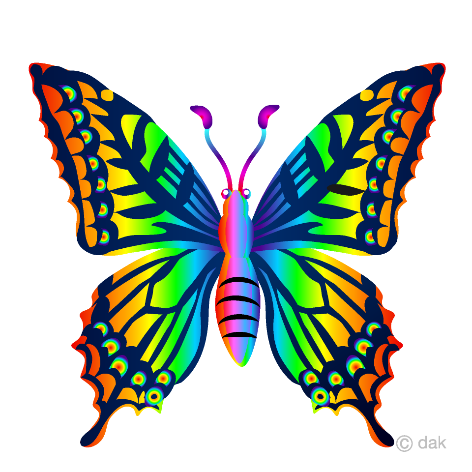 Rainbow butterfly clipart.