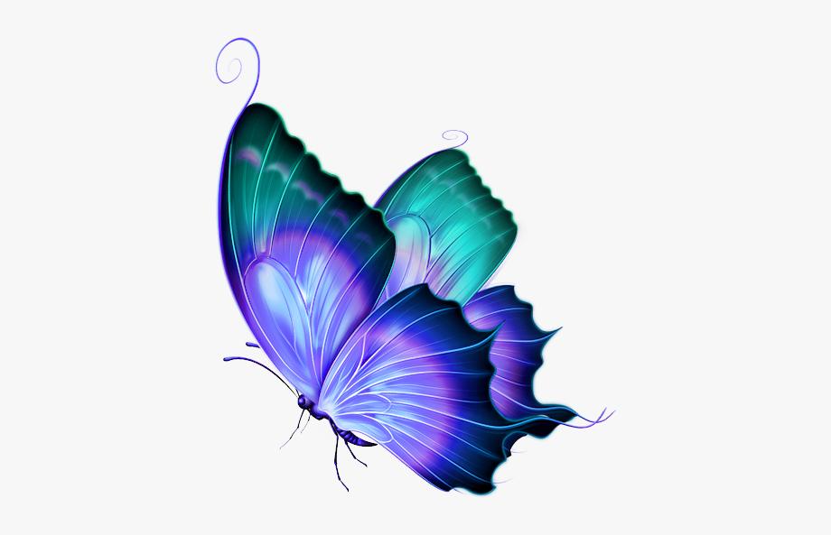 Tubes Papillons Png