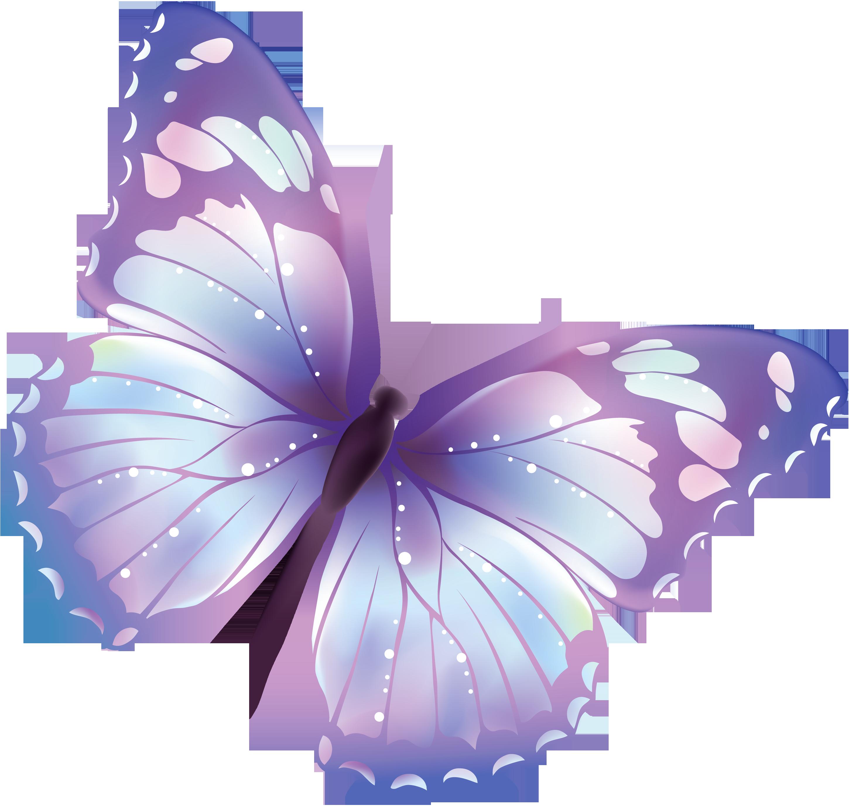 Butterfly pixel clip.