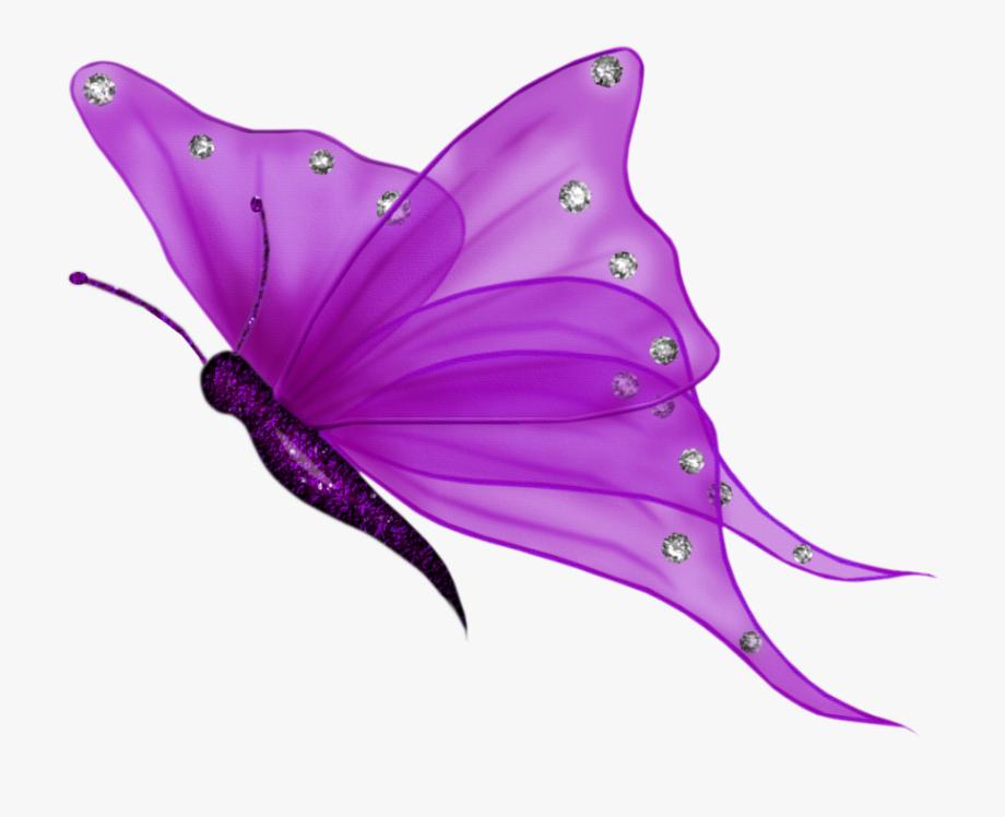 Butterfly purple wings.