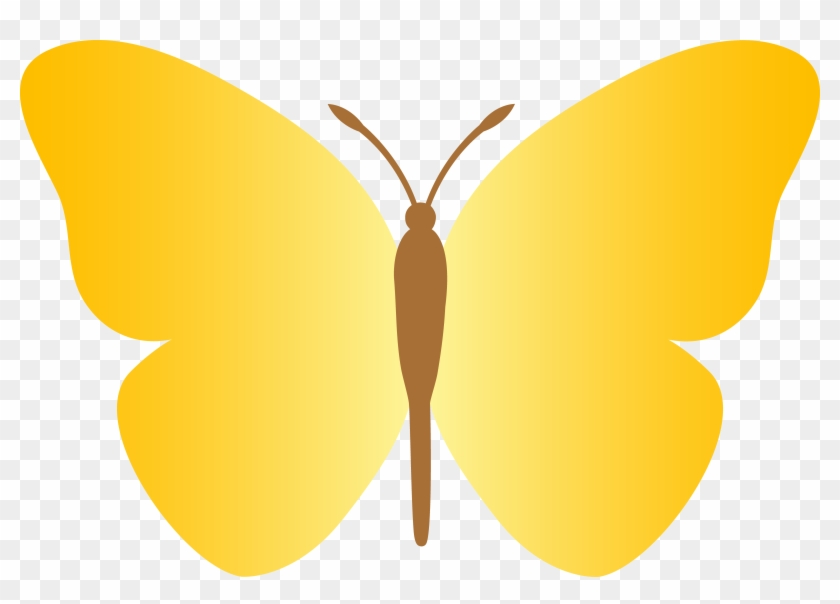 Butterfly Clipart Simple Butterfly