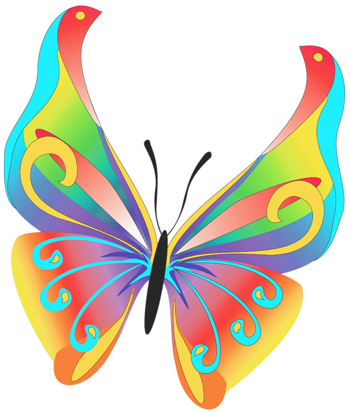 Free Clipart Images Butterfly