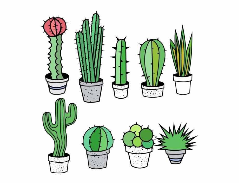 Cactus free clip.
