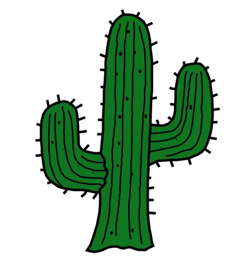 Cactus clipart tumblr.