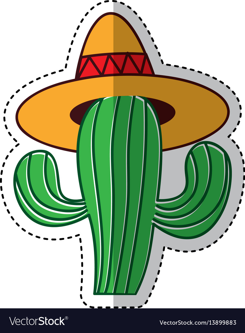 Mexican cactus with.