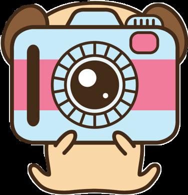 Camera pug kawaii.