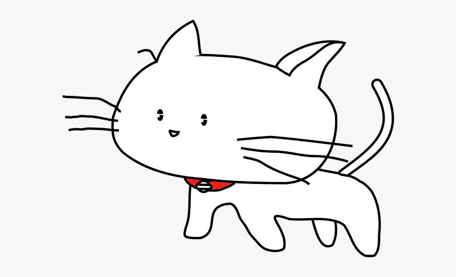 Cat pet animal.