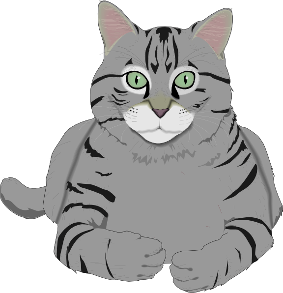Free Gray Cat Cliparts, Download Free Clip Art, Free Clip