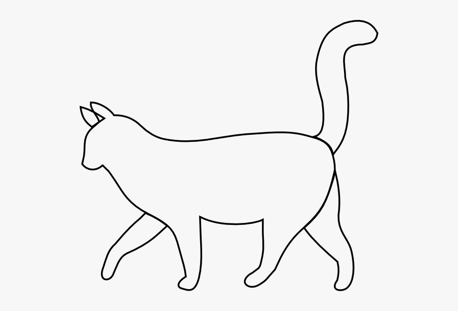 White cat outline.
