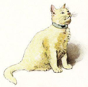 Yellow cat clipart.