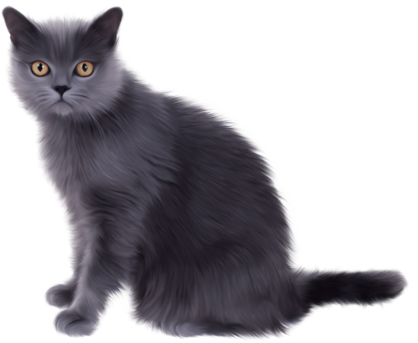 Kittens clipart real, Kittens real Transparent FREE for