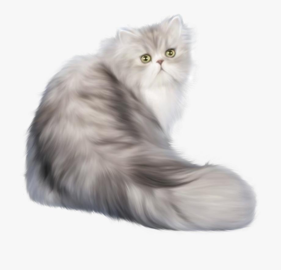 Cat clipart realistic.