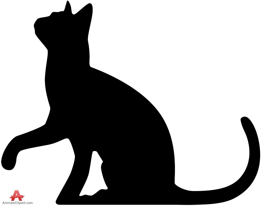 Cat Silhouette Looking Up