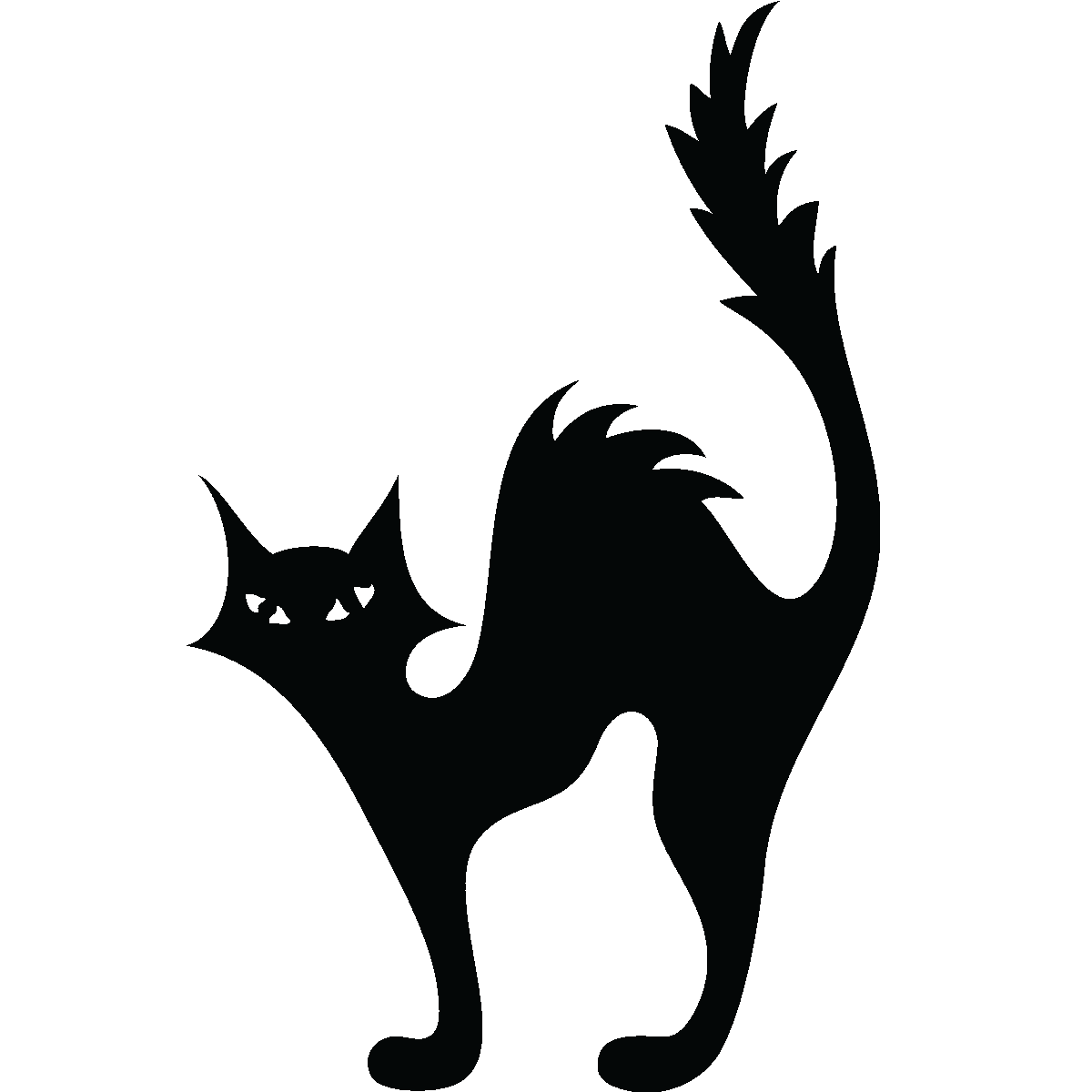 Cat kitten halloween.