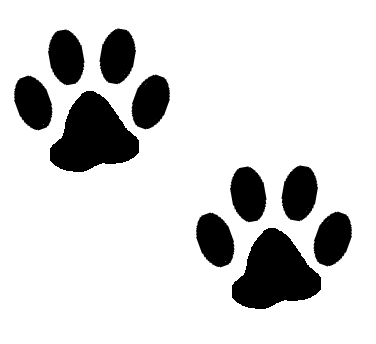 Cat Paw Print Image Clipart