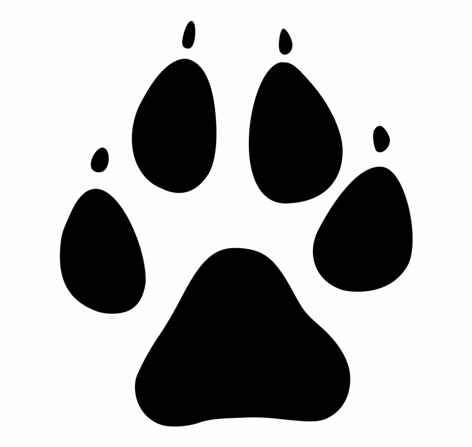 Cat paw print clipart vector. Dog png free images