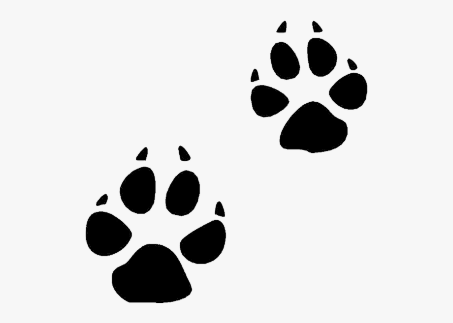Cat paws clipart. Paw print clip