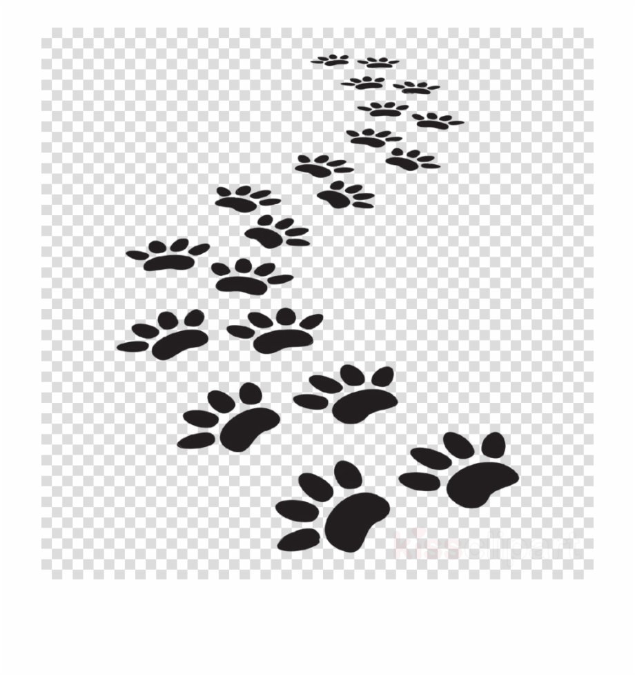 Cat paw print clipart vector. Cat paw print clipart vector. Dog prints tiger
