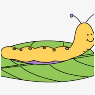Free caterpillar clipart.