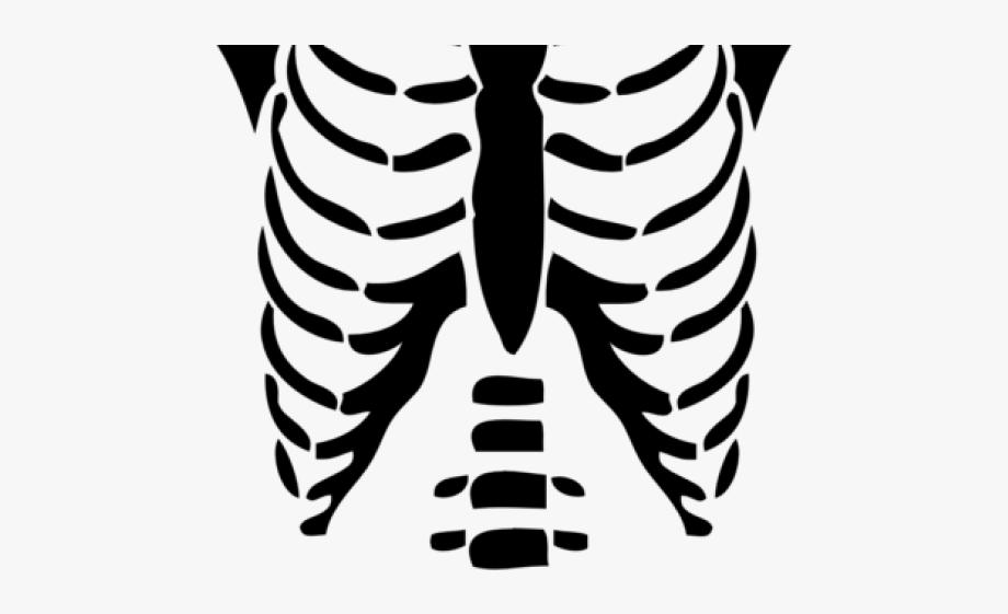 chest clipart skeleton