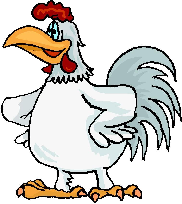 Free chicken moving.