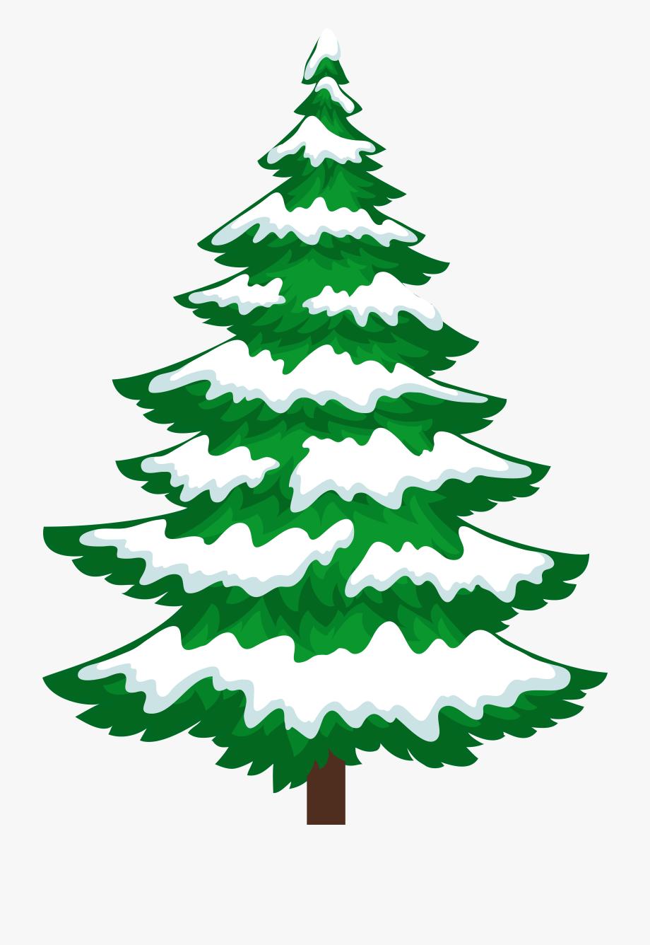 Pine Tree With Snow Transparent Clip Artu