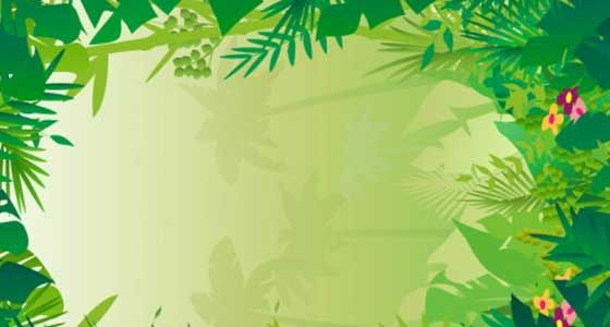 forest background clipart graphic