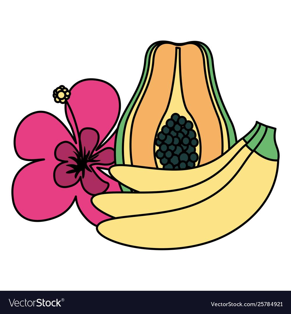 Banana papaya flower.