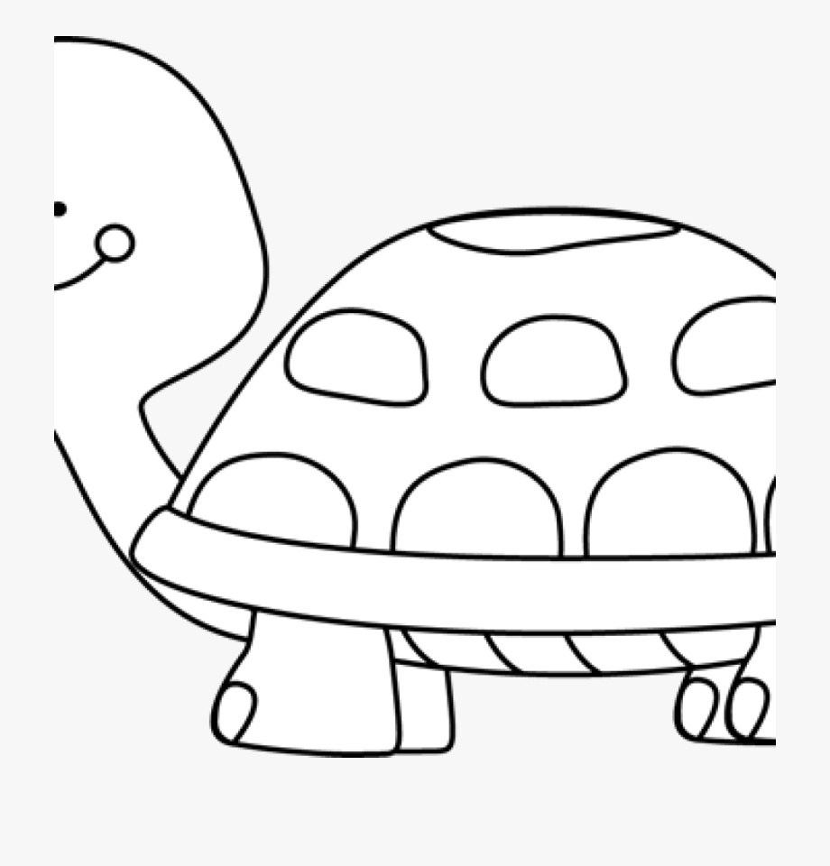 Turtle Clipart Black And White Black And White Turtle