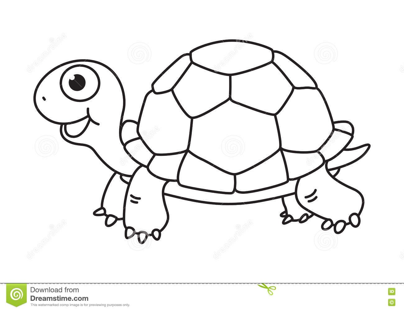 Turtle black and.