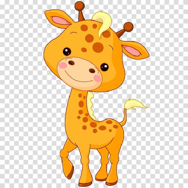 Baby Jungle Animals Northern giraffe , Giraffe Sun